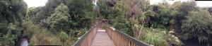 oakley-bridge-360-view