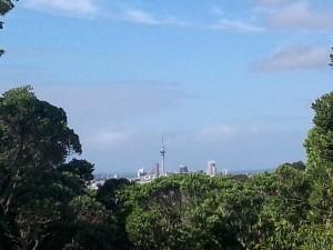 owairaka-sky-tower